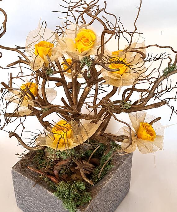 Bonsai uscat cu mini trandafiri criogenati 5