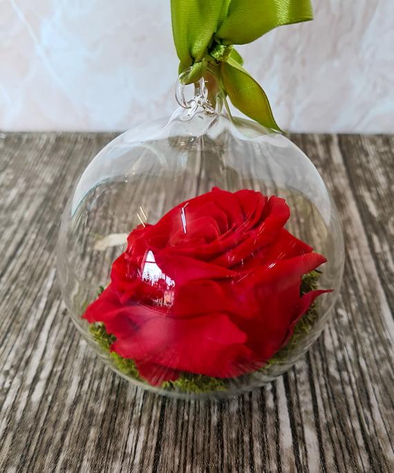 Trandafir criogenat rosu in glob 2