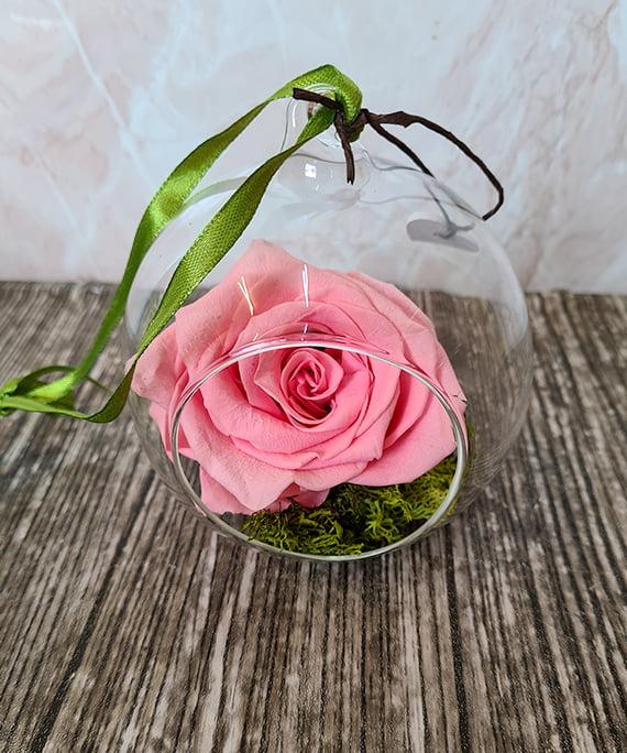 trandafir criogenat roz in glob de sticla 1
