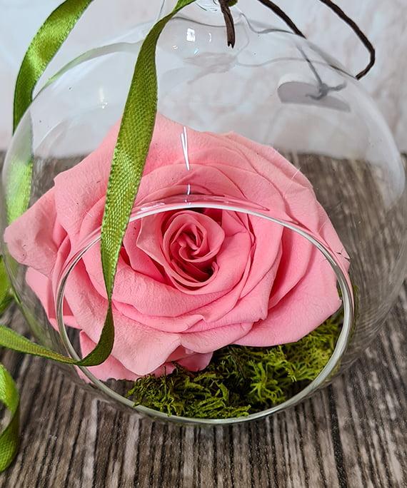 trandafir criogenat roz in glob de sticla 2