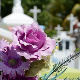 coroane funerare cluj 1